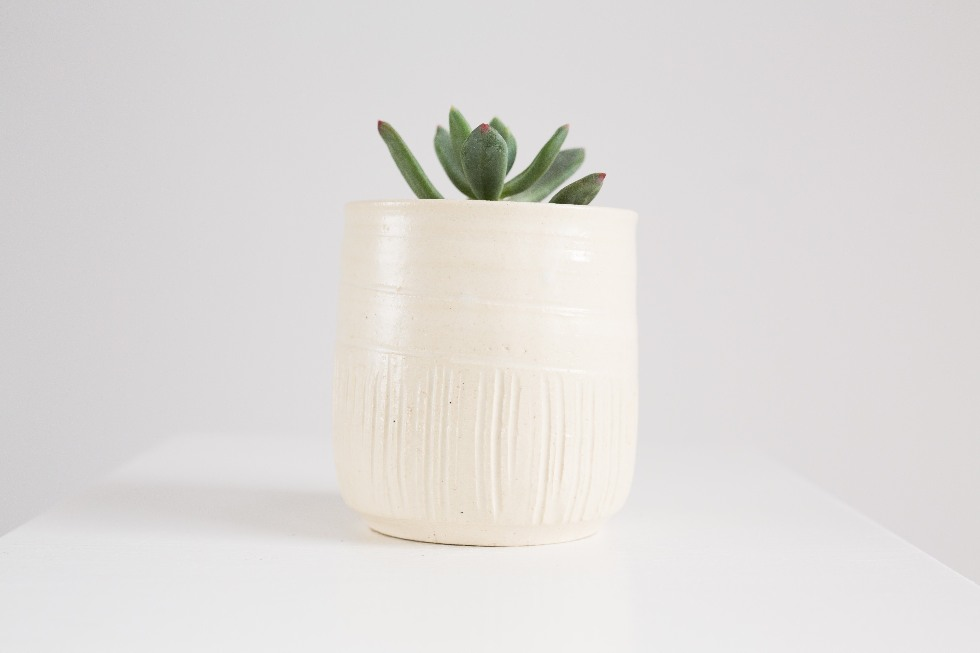High sided succulent planter
